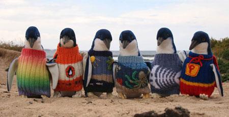 strikking til pingviner